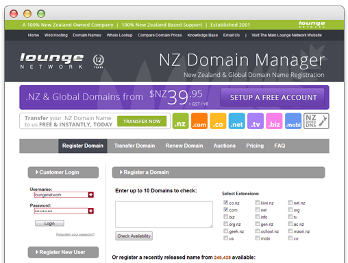 nz-domain-name